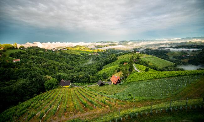 Weingut_Wohlmuth_Steiermark