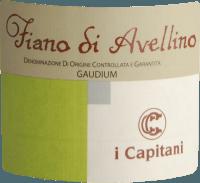 Vorschau: Gaudium Fiano di Avellino 2019 - I Capitani