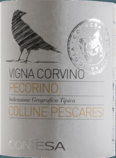 Pecorino 2019 - Contesa di Rocco Pasetti von Contesa