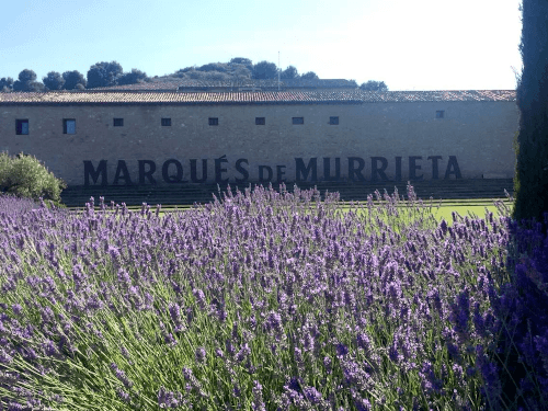 The Spanish winery Marques de Murrieta