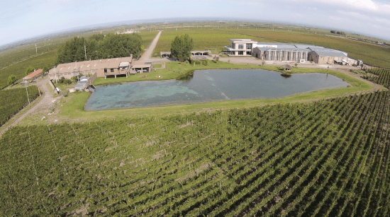 Das gesamte Anwesen der Domaine Bousquet in Argentinien