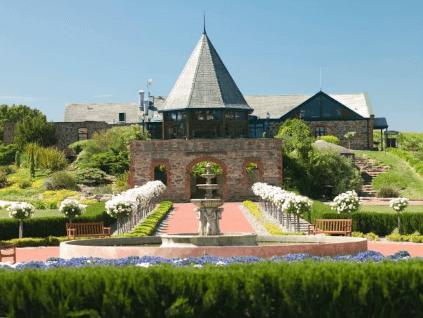Grand Burge Winery