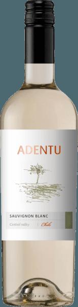 Adentu Sauvignon Blanc 2019 - Viña Siegel