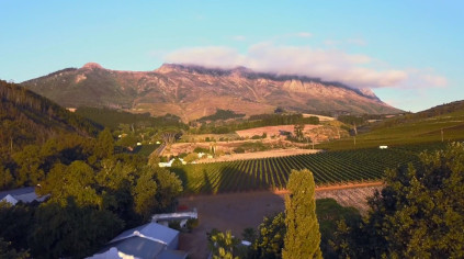 The Knorhoek Valley terroir reveals Muratie's best red wine growing area