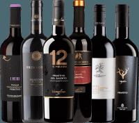 Vorschau: 6er Probierpaket - Primitivo aus Apulien