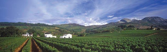 Laborie_Wine_Estate