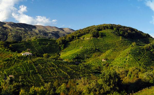 Die Hügel von Valdobbiadene