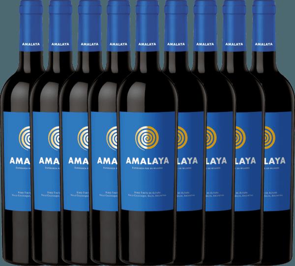 9er Vorteils-Weinpaket - Amalaya Tinto 2018 - Bodega Colomé von Bodega Amalaya