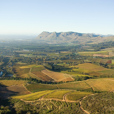 The Constantiaberg terroir has much to offer