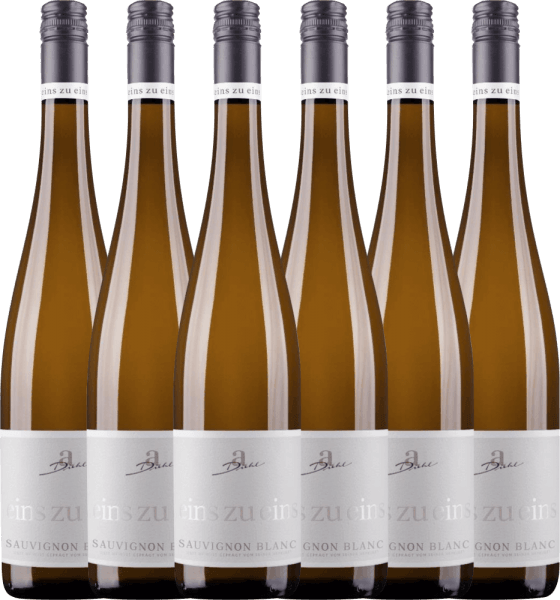 6er Vorteils-Weinpaket - Sauvignon Blanc eins zu eins 2020 - A. Diehl
