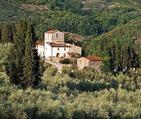 Renzo Masi wine