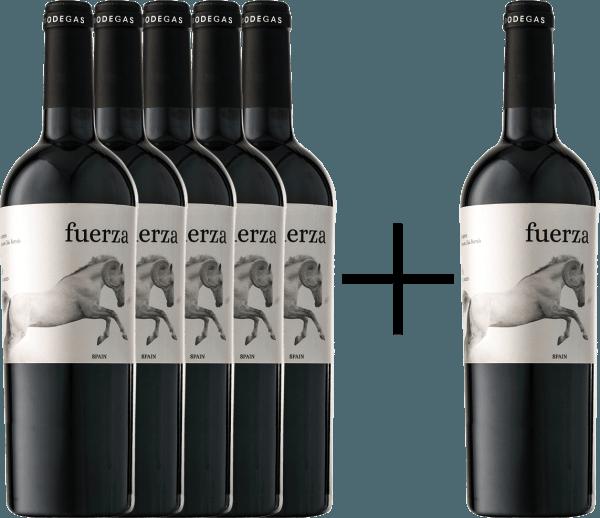 5+1 Vorteils-Weinpaket - Fuerza Jumilla DO 2017 - Ego Bodegas