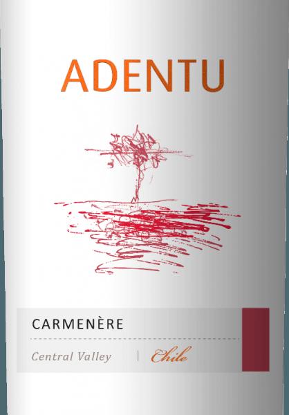 Der AdentuCarménère von Vina Siegel schimmert im Glas in einem satten Kirschrot. Das Bouquet begeistert mit kräftigen Aromen nach reifen Pflaume mit dezenten blumigen und holzigen Nuancen. Der Gaumen lässt sich von der konzentrierten Frucht und von feinen Tanninen verwöhnen. Dieser chilenische Rotwein ist herrlich weich und ausgewogen. Vinifikation desVina SiegelAdentuCarménère Nach der Lese der Trauben wird die Maische im Edelstahltank vergoren. Damit dieser Rotwein seine feinen Holzanklänge bekommt, werden 5% desAdentuCarménère in amerikanischer Eiche für 3 Monate ausgebaut. Speiseempfehlung für denAdentuCarménère Genießen Sie diesen trockenen Rotwein aus Chile zu Gemüse-Sticks mit cremig würzigen Dips, Lammbraten im Kräutermantel mit Kartoffelstampf oder auch zu würzigen Käsesorten - insbesondere Gorgonzola.