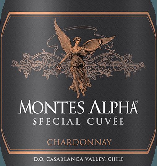 Der elegante Montes Alpha Special Cuvée Chardonnay Montes schimmert mit leuchtendem Goldgelb ins Glas. Die Farbe dieses Weißweins zeigt im Zentrum zudem goldgelbe Reflexe. Schwenkt man das Weinglas, dann kann man bei diesem Weißwein eine perfekte Balance wahrnehmen, denn er zeichnet sich an den Glaswänden weder wässrig noch sirup- oder likörartig ab. Die erste Nase des Montes Alpha Special Cuvée Chardonnay präsentiert von Mirabellen, Guaven und Papayas. Den fruchtigen Aspekten des Bouquets gesellen sich Noten des Fass-Ausbaus wie noch mehr fruchtig-balsamische Nuancen hinzu. Dieser trockene Weißwein von Montes ist für Puristen, die am liebsten knochentrocken trinken. Der Montes Alpha Special Cuvée Chardonnay kommt dem bereits sehr nahe, wurde er doch mit gerade einmal 2,5 Gramm Restzucker gekeltert. Am Gaumen präsentiert sich die Textur dieses ausgeglichenen Weißwein wunderbar knackig und dicht. Durch seine präsente Fruchtsäure offenbart sich der Montes Alpha Special Cuvée Chardonnay am Gaumen beeindruckend frisch und lebendig. Im Abgang begeistert dieser gereifte Weißwein aus der Weinbauregion Aconcagua schließlich mit beachtlicher Länge. Es zeigen sich erneut Anklänge an Mango und Guave. Im Nachhall gesellen sich noch mineralische Noten der von Sand und Lehm dominierten Böden hinzu. Vinifikation des Montes Montes Alpha Special Cuvée Chardonnay Dieser Weißwein legt das Augenmerk klar auf eine Rebsorte, und zwar auf Chardonnay. Für diesen wunderbar balancierten sortenreinen Wein von Montes wurde nur erstklassiges Traubenmaterial verwendet. Die Trauben wachsen unter optimalen Bedingungen in Aconcagua. Die Reben graben hier ihre Wurzeln tief in Böden aus Lehm und Sand. Die Trauben für diesen Weißwein aus Chile werden, nachdem die optimale Reife sichergestellt wurde, ausschließlich von Hand . Nach der Weinlese gelangen die Trauben zügig ins Presshaus. Hier werden sie selektiert und behutsam gemahlen. Es folgt die Gärung im Edelstahltank und kleinen Holz bei kontrollier