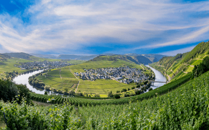The Moselle bend near Leiwen