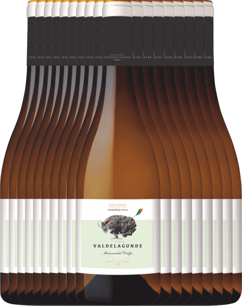 18er Vorteilspaket - Valdelagunde Cuvée Especial Verdejo 2020 - Pedro Escudero