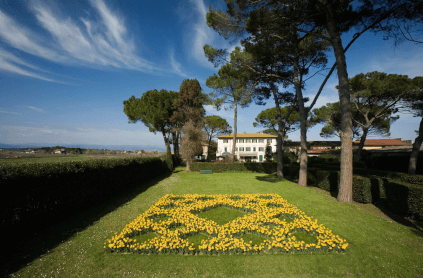 View of the garden and villa
