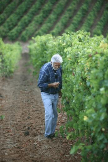 The winemaker José Neiva Correia