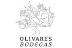 Bodegas Olivares
