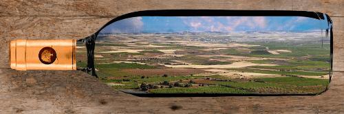 landschaft-bei-bodegas-aragonesas