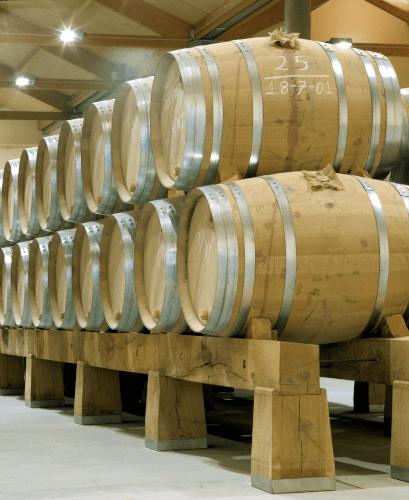 Fässer im Weinkeller von Aster