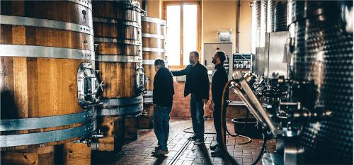 Im Weinkeller von Buscareto