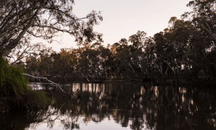 The Goulburn River
