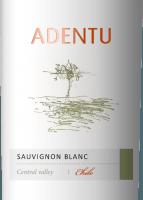 Vorschau: Adentu Sauvignon Blanc - Viña Siegel