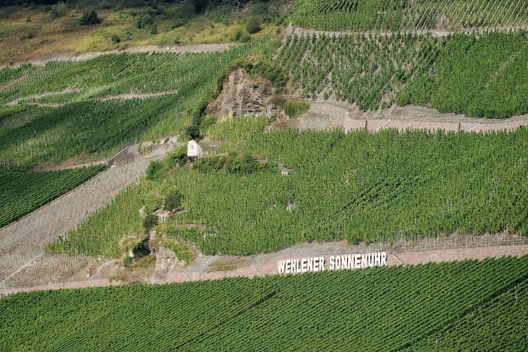 Die Lage Wehlener Sonnenuhr vom Weingut Schloss Lieser