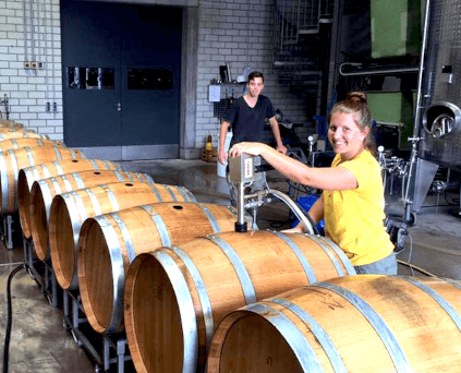 Work in the cellar of Rebholz
