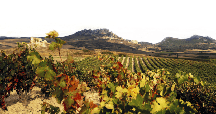 Blick über die Rioja Alta