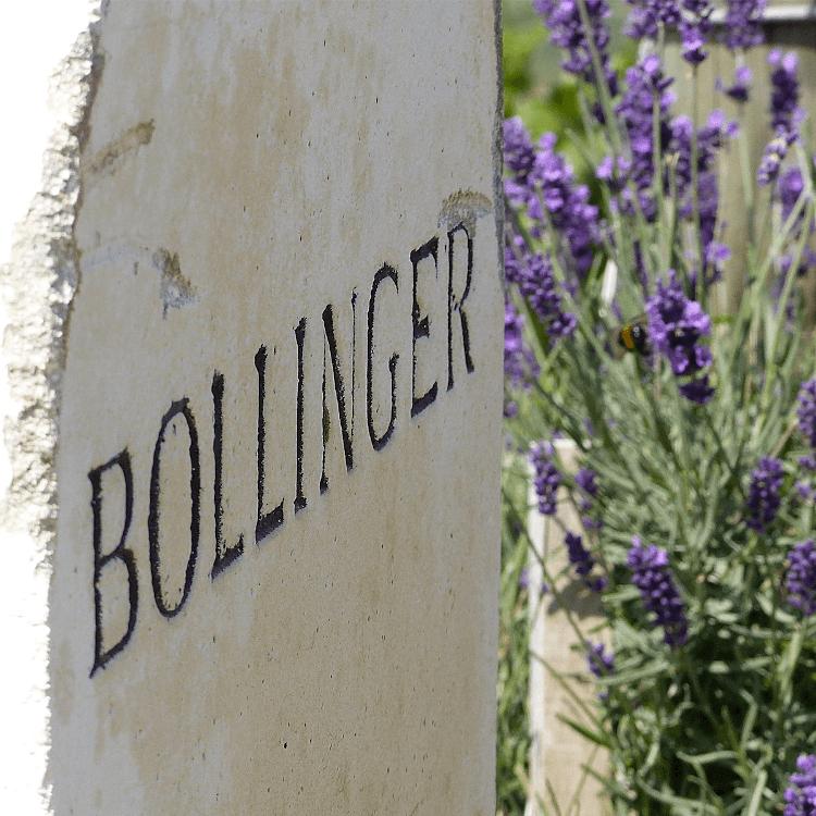 Prickelndes Vergnügen mit Champagner von Bollinger