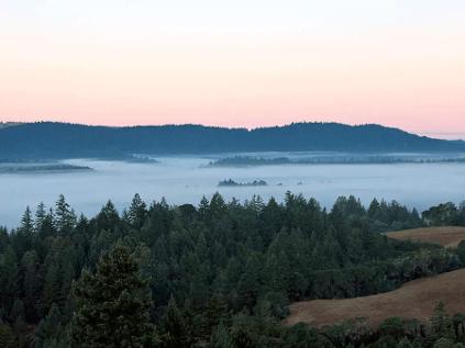 Das Anderson Valley