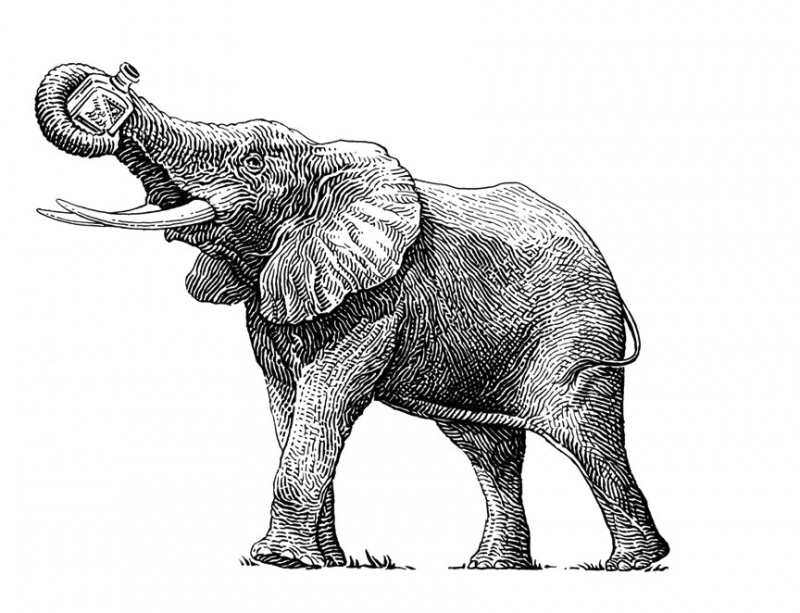 Elephant Gin GmbH