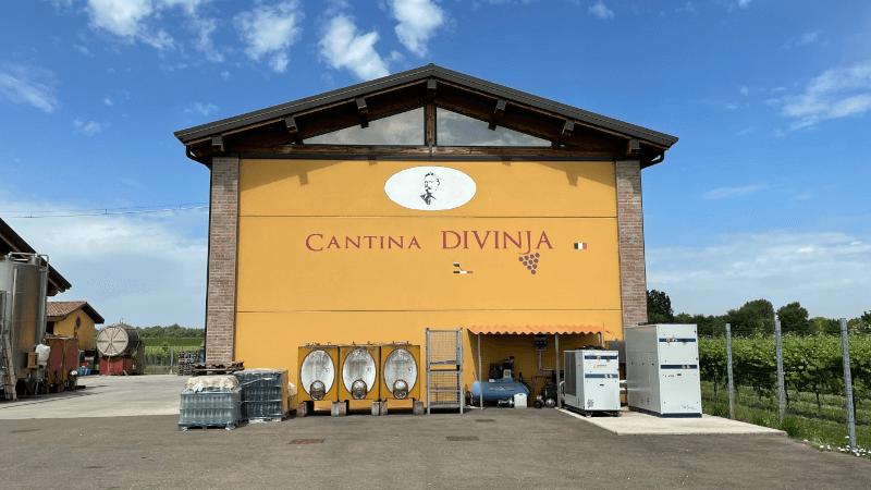 Cantina-Divinja-Keller
