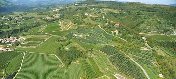 Die Hügel des Valpolicella