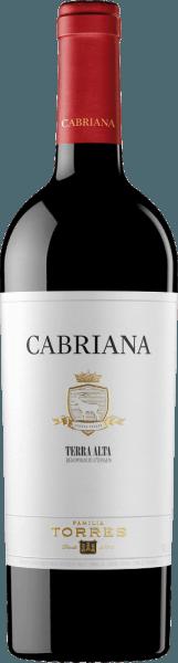 Der Cabriana von Miguel Torres ist eine wundervolle, spanische Rotwein-Cuvée aus den Rebsorten Garnacha und Syrah. Im Glas schimmert dieser Wein in einem dunklen Kirschrot mit purpurnen Reflexen. Das aromatische Bouquet offenbart eine intensive, dunkle Beerenaromatik - Brombeeren, schwarze Johannisbeere und Blaubeerkonfitüre. Dazu gesellen sich feine Anklänge nach Pfeffer und Gewürzen. Am Gaumen überzeugt dieser spanische Rotwein mit einer ausdrucksstarken, saftigen Persönlichkeit, die von einer samtweichen, würzigen Textur getragen wird. Das Finale wartet mit einer angenehmen Länge und einem Hauch Lakritz auf. Vinifikation des Cabriana Miguel Torres Die Trauben werden bei optimaler Reife gelesen und nach der Lese umgehend in die Weinkellerei von Miguel Torres gebracht. Dort wird das Lesegut für insgesamt 10 Tage eingemaischt. Dadurch werden den Beerenhäuten die Aromen, die Tannine und die Farbpigmente entzogen. Anschließend wird die Maische bei kontrollierter Temperatur im Edelstahltank vergoren. Für 8-12 Monate reift dieser Rotwein in Eichenfässern - getrennt nach den Rebsorten Garnacha und Syrah. Erst nach Abschluss des Holzausbaus werden die beiden Rebsorten vermählt und ruht für einige Zeit weiter auf der Flasche. Speiseempfehlung für den Torres Cabriana Genießen Sie diesen trockenen Rotwein aus Spanien zu gegrilltem Lamm, gebratenem Rindfleisch, kräftig-würzigen Eintöpfen oder auch zu mittelkräftigen Käsesorten.