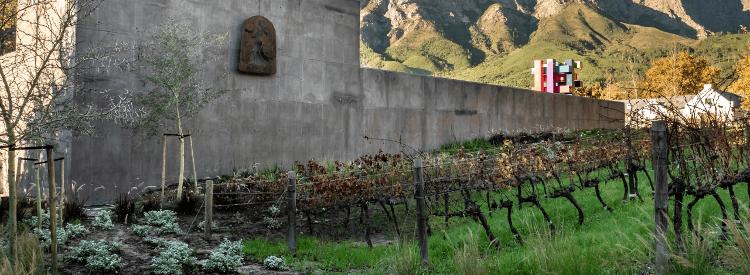 The wine cellar of Boekenhoutskloof
