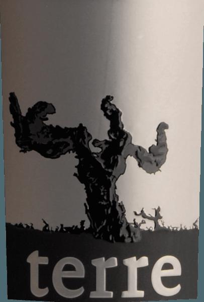 Der Rosso Puglia IGT in der Magnumflasche von Terre di Campo Sasso kommt ins Glas in einem satten und tiefen dunkelrot. Der Nase präsentieren sich üppige Fruchtaromen wie Sauerkirschen und dunkle Beeren. Am Gaumen werden diese ergänzt durch Noten von Zimt und Tabak. Die Fruchtsüße der Cuvée aus Primitivo, Malvasia und Syrah ist wunderschöne durch eine angenehm leichte Säure und samtige Tannine ausbalanciert. Das Finale ist weich und langanhaltend. Ideal als Geschenk. Der Halbtrockene Rotwein aus Apulien wird ihnen in einer hochwertigen Magnumholzkiste geliefert. Vinifikation des Rosso aus Apulien von Terre di Campo Sasso Die Trauben werden selektiv gelesen und ca. 7 Tage auf der Maische vergoren. Der Ausbau erfolgt in Holzfässern über einen Zeitraum von 14 Monaten. Speiseempfehlung für den Rosso Puglia von Terre di Campo Sasso in der Magnumflasche Genießen Sie diesen halbtrockenen Rotwein aus Italien zu kräftigen Gerichten vom Schwein und Rind, Braten in dunklen Soßen, gegrilltem Fleisch, Lamm und Wild oder zu kräftigen Käsesorten.
