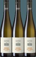 3er Vorteils-Weinpaket - Grüner Veltliner Federspiel Terrassen 2019 - Domäne Wachau
