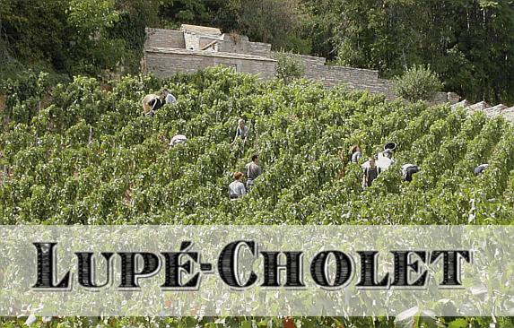Lupé-Cholet