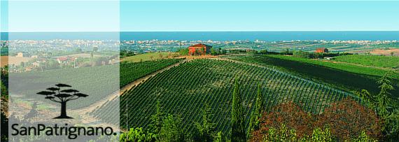 SanPatrignano