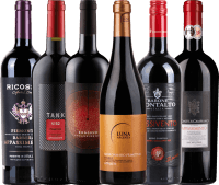 6er Probierpaket - Appassimento Rotweine
