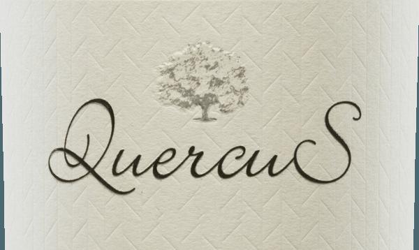 """Der SpitzenweinQuercus von Quinta de Quercus wird nur in besonders guten Jahrgängen von den beiden WinzernSam Harrop und Tomás Buendìa aus der Tempranillo-Traube vinifiziert. Im Glas beeindruckt dieser Wein mit einem tiefdunklen Rubinrot. Das vielschichtige Bouquet verwöhnt die Nase mit den rebsortentypischen Aromen: saftige Kirsche, trifft auf frische Erdbeeren und saftige Pflaume. Unterlegt werden die rote Fruchtfülle von frischen Kräutern - wie Thymian und Rosmarin - und Lakritz. Am Gaumen ist dieser spanische Rotwein vollmundig mit einer samtig-weichen Textur. Der gut strukturierte Körper harmoniert perfekt mit den ausbalancierten Tanninen. Das Finale wartet mit wundervoller, ausdrucksstarker Länge und beerigen Nuancen auf. Vinifikation des Quercus Rotwein Von 30 Jahre alten Rebstöcken in den Einzellagen Viña Ocaña und Camino La Morras stammen die Tempranillo-Trauben für diesen Rotwein. Die beiden Weinmacher Sam Harrop und Tomás Buendìa verfolgen dabei eine klare Philosophie terroir-geprägte Lagenweine aus heimischen spanischen Rebsorten zu keltern, mit Tiefe, Eleganz, Komplexität und Reifepotential. Das sorgsam von Hand gelesene und selektierte Traubengut aus den beiden Einzellagen wird sanft gepresst. Die daraus resultierende Maische wird temperaturkontrolliert in Edelstahltanks vergoren. Der Holzausbau findet bei diesem Wein für insgesamt 12 Monate in Barriques aus amerikanischer und französischer Eiche statt. Erst dann wird dieser Wein auf die Flaschen abgefüllt. Je nach Jahrgang und Verlauf der Weinlese wird dieser Wein """"neu geschaffen"""", um das hohe Potential aus den Tempranillo-Trauben der beiden Lagen optimal zu nutzen. Speiseempfehlung für den Tempranillo Quinta de Quercus Genießen Sie diesen trockenen Rotwein aus Spanien dekantiertan gemütlichen Abendeneinfach nur Solo. Aber dieser Wein ist auch der perfekte Speisebegleiter zu aufwendigen Wildgerichten und Schmorbraten."""