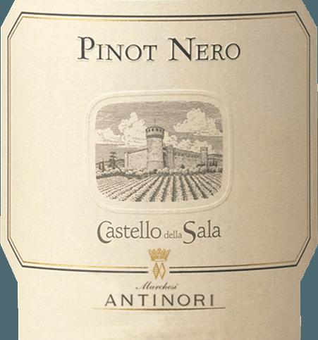 Der im Fass ausgebaute Pinot Nero Umbria aus der Weinbau-Region Umbrien präsentiert sich im Glas in leuchtendem Hellrot. An den Rändern zeigt sich zudem ein farblicher Übergang ins granatrote. Schwenkt man das Glas, dann kann man bei diesem Rotwein eine erstklassige Balance wahrnehmen, denn er zeichnet sich an den Glaswänden weder wässrig noch sirup- oder likörartig ab. Der Nase zeigt dieser Castello della Sala Rotwein allerlei Veilchen, Rosen, Flieder, Maulbeeren und Lilien. Als wäre das nicht bereits eindrucksvoll, gesellen sich durch den Ausbau im kleinen Holzfass weitere Aromen wie schwarzer Tee, Zimt und Kakaobohne hinzu. Dieser italienische Wein begeistert durch sein elegant trockenes Geschmacksbild. Er wurde mit 3,3 Gramm Restzucker auf die Flasche gebracht. Hier handelt es sich um einen echten Qualitätswein, der sich klar von einfacheren Qualitäten abhebt und so verzückt dieser Italiener natürlich bei aller Trockenheit mit feinster Balance. Exzellenter Geschmack braucht nicht zwingend Restzucker. Auf der Zunge zeichnet sich dieser ausgeglichene Rotwein durch eine ungemein schmelzige, seidige und samtige Textur aus. Durch seine vitale Fruchtsäure zeigt sich der Pinot Nero Umbria am Gaumen beeindruckend frisch und lebendig. Das Finale dieses gereiften Rotwein aus der Weinbauregion Umbrien, genauer gesagt aus Umbria IGT, überzeugt schließlich mit beachtlichem Nachhall. Der Abgang wird zudem von mineralischen Noten der von Kalkstein und Mergel dominierten Böden begleitet. Vinifikation des Castello della Sala Pinot Nero Umbria Dieser Wein legt das Augenmerk klar auf eine Rebsorte, und zwar auf Pinot Noir. Für diesen außergewöhnlich balancierten sortenreinen Wein von Castello della Sala wurde nur bestes Lesegut verwendet. Die Trauben wachsen unter optimalen Bedingungen in Umbrien. Die Reben graben hier ihre Wurzeln tief in Böden aus Sand, Kalkstein und Mergel. Die Beeren für diesen Rotwein aus Italien werden, nachdem die optimale Reife sichergestellt wurde, aussch