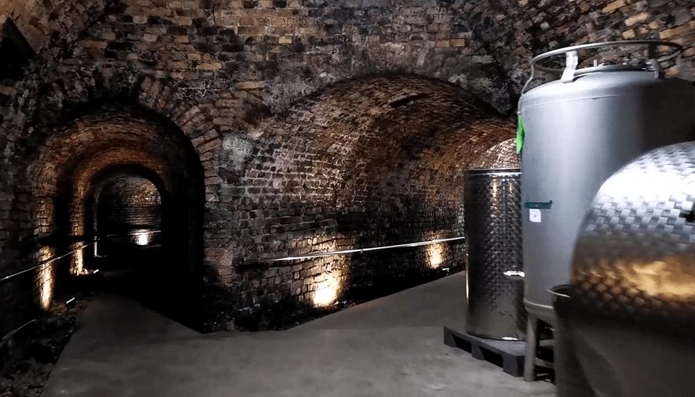 Weingut Loimer Altes Kellergewoelbe
