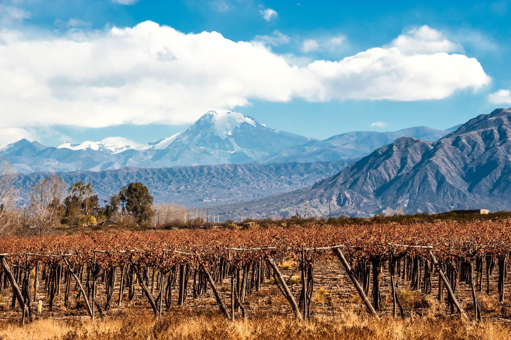 argentinischer-wein-kaiken-malbec-reserva