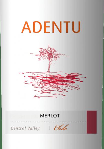 Der Adentu Merlot von Vina Siegel ist ein reinsortiger Rotwein mit einer wundervoll rubinroten Farbe im Glas. In der Nase entfalten sich intensive Noten nach reifen Herzkirschen und frischen Kräutern. Untermalt werden die Aromen der Nase von Nuancen nach Minze. Am Gaumen präsentiert sich eine fleischiger Körper, der perfekt mit der üppigen Frucht und den ausgewogenen Tannine harmoniert. Das Finale ist wunderbar weich. Speiseempfehlung für denAdentuMerlot Dieser trockene Rotwein aus Chile ist ein perfekter Speisebegleiter zu unterschiedlichsten Aufläufen (egal ob mit Fleisch oder vegetarisch), herzhaften Kartoffelpuffern oder auch zu Schweinemedaillons mit frischen Bohnen.