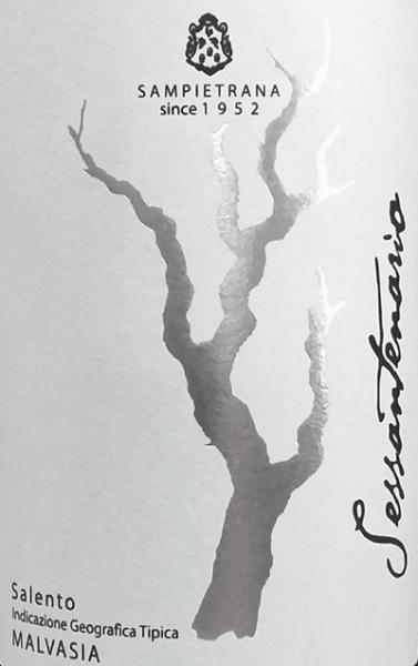 """Der Sessantenario Malvasia Salento IGT von Cantina Sampietrana funkelt intensiv Rubinrot mit violetten Reflexen im Glas. An der Nase entfalten sich Aromen von Konfitüre aus kleinen roten Beeren, leicht würzig und Noten von Vanille. Am Gauemn ist dieser ansprechende Rotwein aus Apulien voll und elegant, mit angenehmen, süen Tanninen, der Abgang ist lang und nachhaltig. Vinifikation des Sessantenario Malvasia Salento IGT von Cantina Sampietrana Für diesen Rotwein aus der Linie Selezioni werden 100% Malvasia Nera vinifiziert. Die Rebstöcke, die auf tonhaltigen bis kalkhaltigen Böden wachsen, werden mit der traditonellen Methode des """"alberello pugliese"""" erzogen, was insbesondere für die lokalen Rebsorten optimale Ergebnisse liefert. Nach der manuellen Lese in der zweiten Dekade im September, werden die Trauben temperaturkontrolliert mazeriert und vergoren, anschließend sanft gepresst und der Trester vom Wein getrennt. Der Wein wird 6 bis 8 Monate in Barriques ausgebaut bevor er in den Verkauf kommt. Speiseempfehlungen für den Sessantenario Malvasia Salento IGT von Sampietrana Dieser elegante vollmundige Rotwein aus dem Süden Apuliens ist ein perfekter begleiter für gegrilltes rotes Fleisch und Lammm und reife Käsesorten, am besten bei 18 bis 20°C serviert. Auszeichnungen für den Sessantenario Malvasia Salento IGT von Sampietrana Mundus Vini: Silber für 2013 Decanter Asia Awards: Bronze für 2013"""