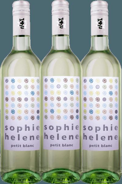 3er Vorteils-Weinpaket - Sophie Helene petit blanc 2019 - Weingut Hammel